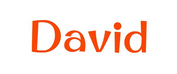 significado nombre david