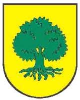 heraldica-apellido-valenciano