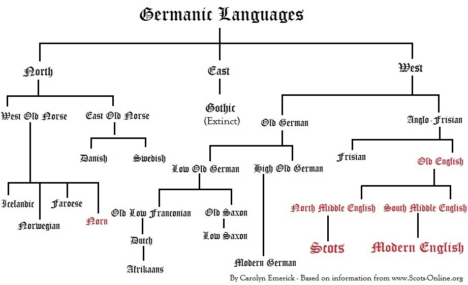 The Origin of Language Tracing the Evolution of the